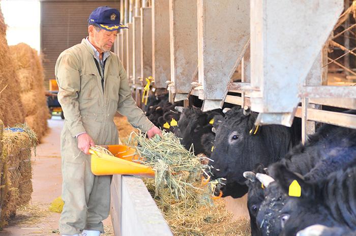 信州和牛・信州プレミアム牛生産者 野神牧場